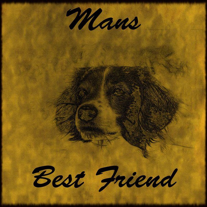 Mans Best Friend - Calligraphy