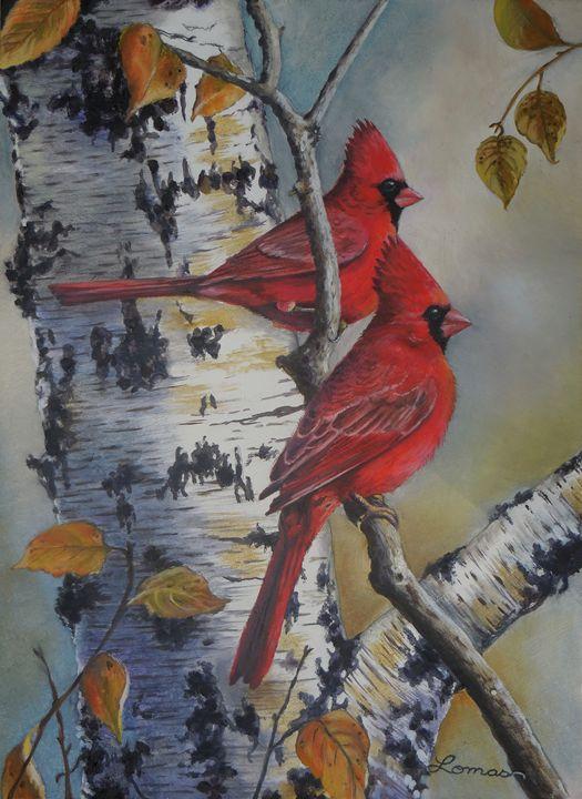 Male Cardinals 2 - Martina Lomas