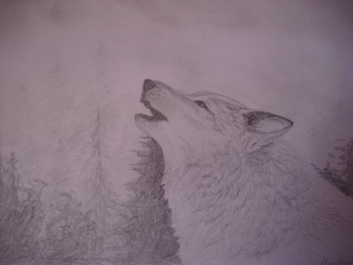 Wolf -  Vt.monika.petrovic
