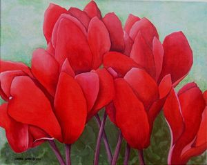 Red Cyclamens - Southwest & Florals by Carol