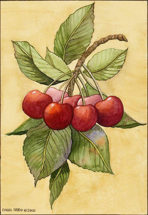 Cherries - Southwest & Florals by Carol