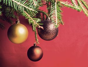 Christmas toy - rokkis