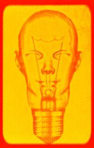 human bulb