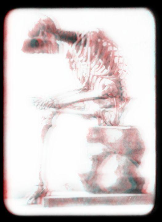human skeleton sitting - ISRA