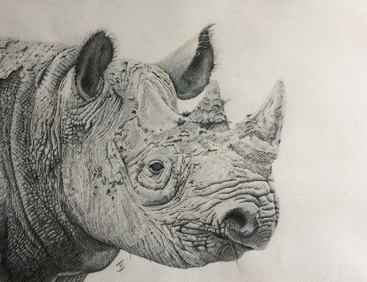 Black Rhino - Tracey Bryant