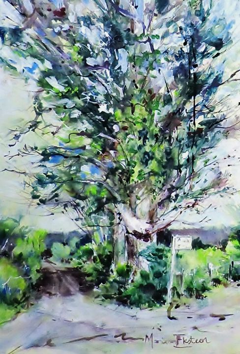 Bethulie Countryside. - Mariana Eksteen