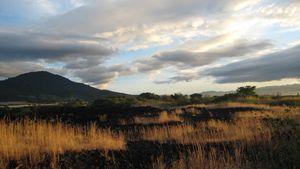 Fiery Field