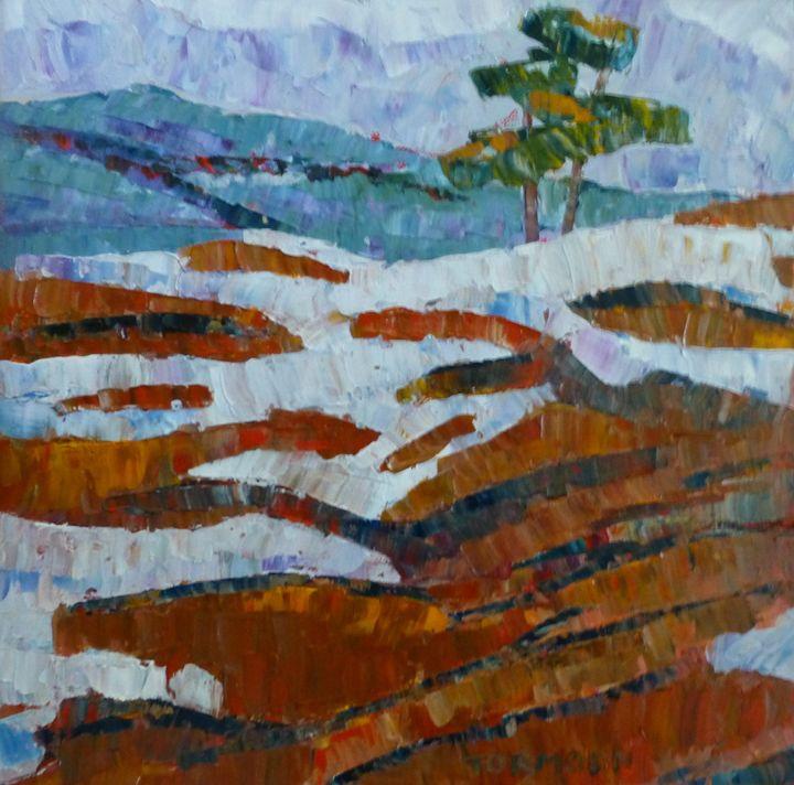 Snow on the Rocks - Susan Tormoen
