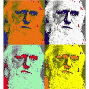 Darwin in Pop (2012)