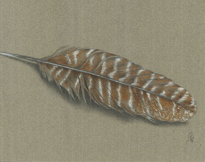 Turkey Feather - Christel Huttar