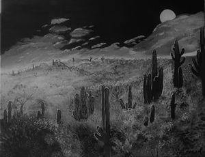 Cactus Night