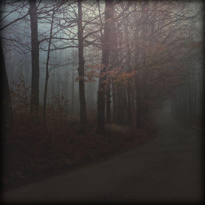 Somber - Peter Carini