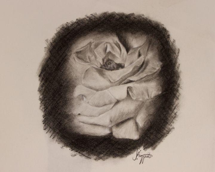 Gentle - Sophia Rizzuto