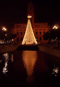 Christmas tree at Mayors house - OPO