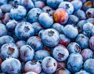 Blueberries - MJB DigiArt