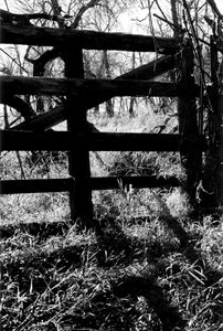 Through the Gate 1