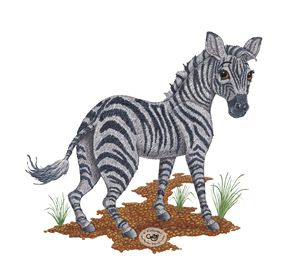 Zebra - Illustration by Cat