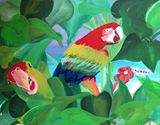 Parrots in the wild