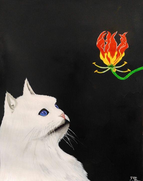 Meow - Magic Man McGann