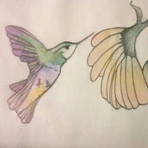 Hummingbird Flower