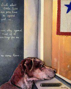Military Dog Waits