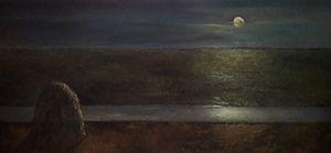 The field under moonlight
