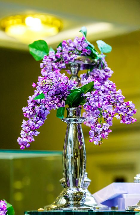 Branch of lilac. - Lery Solo