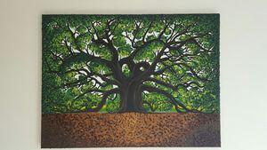 Giant Angle Oak Tree