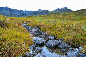 Hatcher Pass, AK stream.