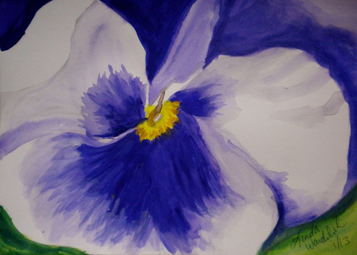 Pansy Study #1 - Linda Waidelich