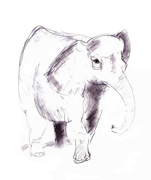 elephant - Art Gallery