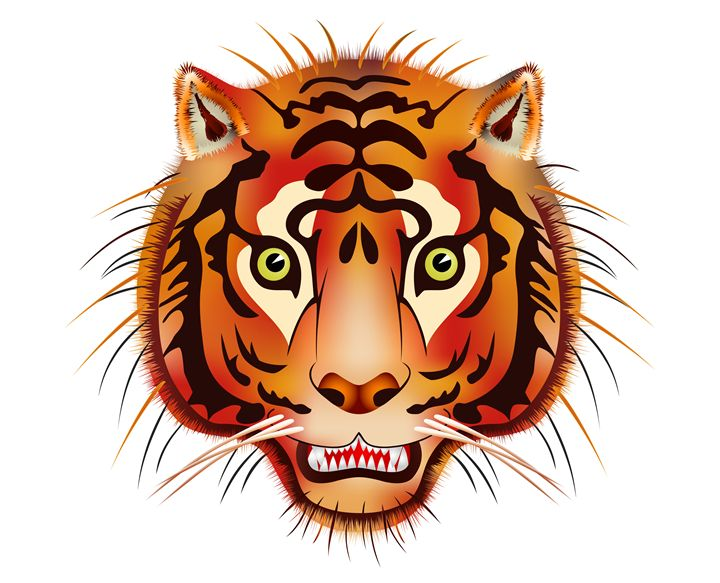 tiger head - Art Gallery