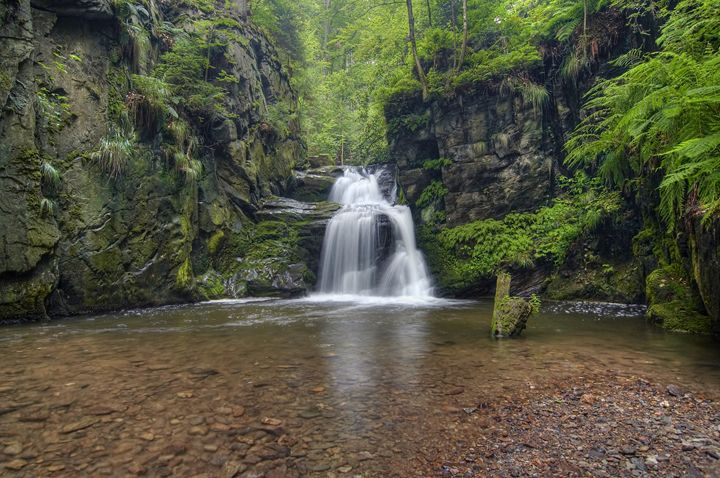 waterfall - Art Gallery