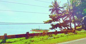 Shoreline # 1