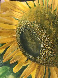 Sunflower - Ginger Czarnecki