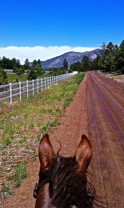 Horses Ears on E. Old Walnut Canyon - Nobility Ranch, Season M. Ellison