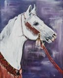 Original horse series painting