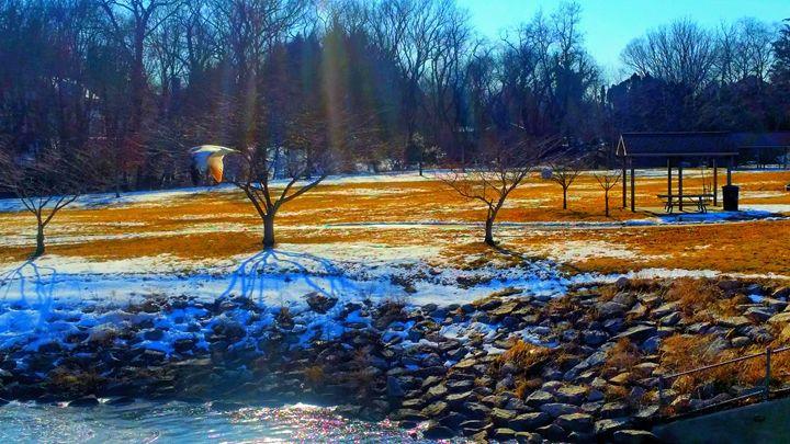 Dusk Dawn At The Pond - TSMMZ1