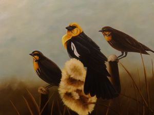Beautiful Birds in Nature Painting