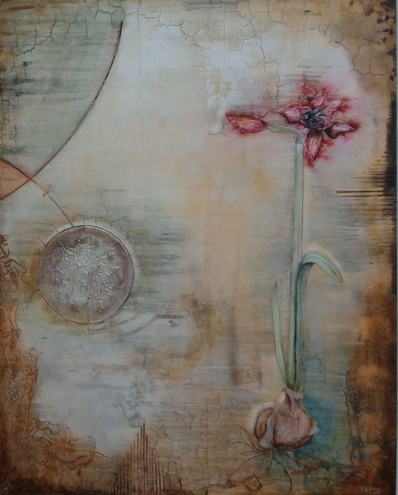 Amaryllis,beauty in my universe - Atelier Hoffmann