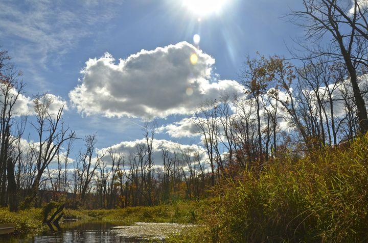 Sunny Day Fall - PhotosbyNan