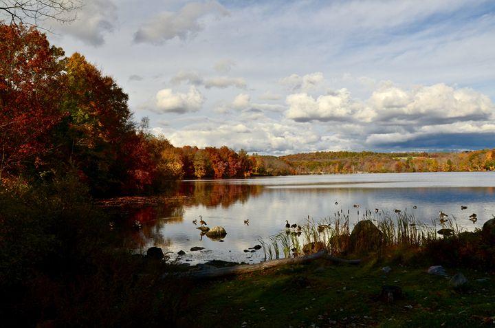 Along the bike trail - PhotosbyNan