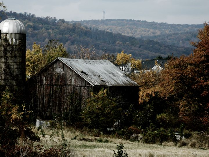 Backyard Barn - Paige Evans