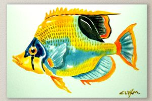 Fish Four