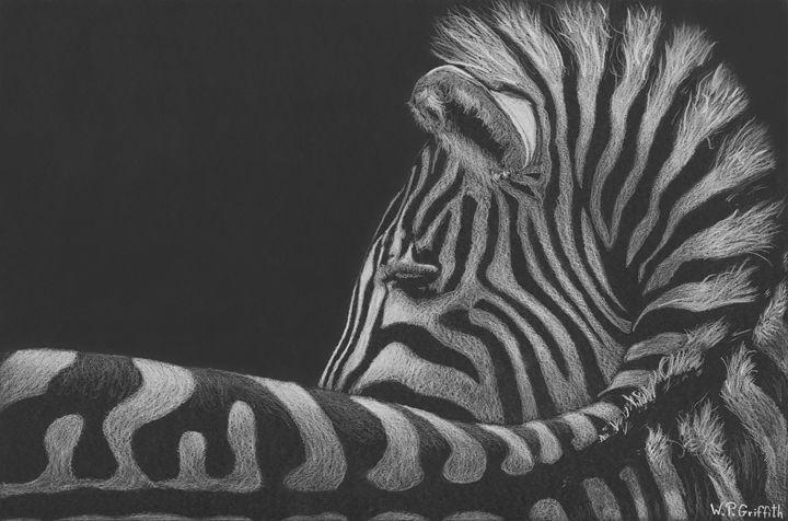 Wild wisdom / Zebra - WP Griffith