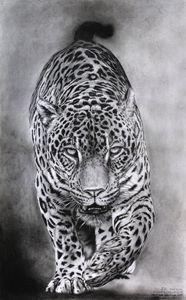 Jaguar_yaguarete