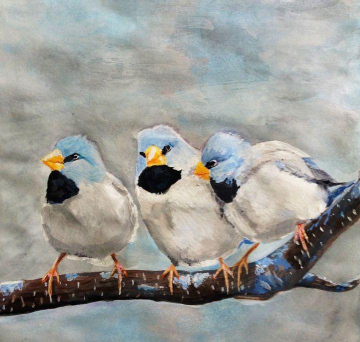 Little Birds - Jenny Shaykevich