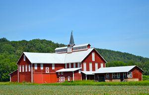 Maple Grove Barn