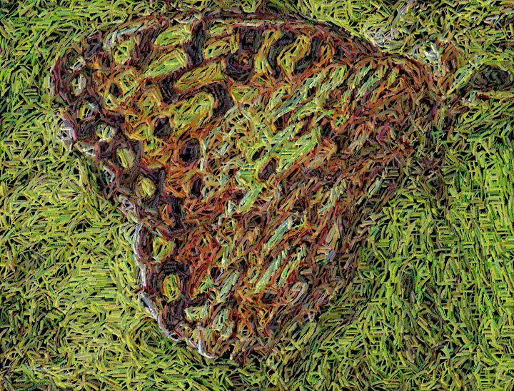 Love Butterfly - Meditations
