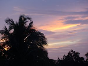 Hues of Sunset 1